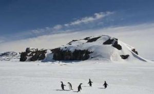 UQ researcher's icy-GeologyPage