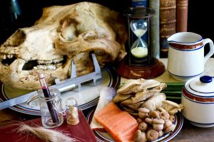 Dissecting the animal diet-GeologyPage