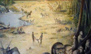 Early human habitat-GeologyPage