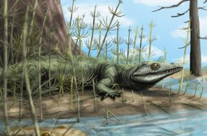 Paleontologists discover 250-GeologyPage