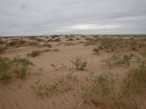 Sand dunes are important-GeologyPage