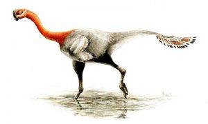 Deceptive feathered dinosaur-Geologypage