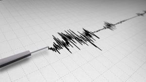 Seismogram2