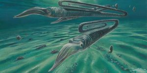 Antarctic fossils reveal creatures-GeologyPage