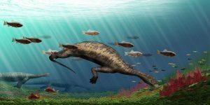 Hammerhead creature was world-GeologyPage