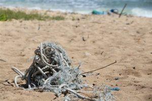 In this May 5, 2016 image provided by the state of Hawaii, ocean debris accumulates in Kahuku, Hawaii on the North Shore of Oahu. State officials say a study of the eight main Hawaiian Islands shows that ocean debris regularly accumulates around the archipelago, and that most of it is not linked to the March 2011 earthquake and tsunami in Japan. The aerial survey shows that much of the debris that accumulates on the shores of Hawaii is from fishing gear and plastics discarded locally. (Dan Dennison/Hawaii Department of Land and Natural Resources via AP)