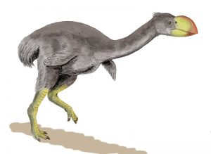 Big bird sex life-GeologyPage