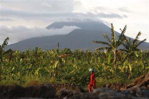 Congo volcano brings farmers-GeologyPage