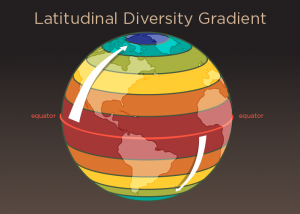 Current diversity pattern of-GeologyPage