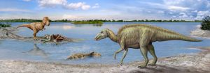 Our ancestors evolved faster-GeologyPage