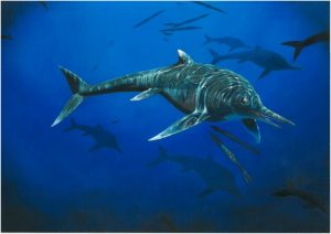 Palaeontologist discovers new -GeologyPage