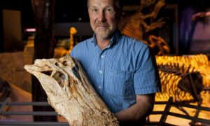 New study also shows it shared ancient Florida with giant crocodiles. Credit: Kristen Grace
