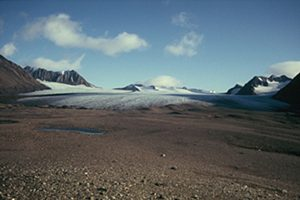Fig. 1. Werenskioldbreen and its forefield (August 2010). Credit: Łukasz Stachnik