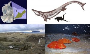 Upper left. Kaikaifilu was found in late cretaceous rocks from Seymour island, Antarctica. Upper right. An estimated size comparison of Kaikaifilu with a human. The size of the skull remains suggest it could have been as long as 12-14 mt. Bottom left: The terrain where the remains of Kaikaifulu were found turns mostly into mud under bad weather conditions like those encountered by the Chilean expedition (bottom right). Credit: Image courtesy of University of Chile