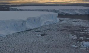 Pine Island Glacier is nearly two thirds the size of the Uk or the size of Texas Credit: James Smith/ British Antarctic Survey