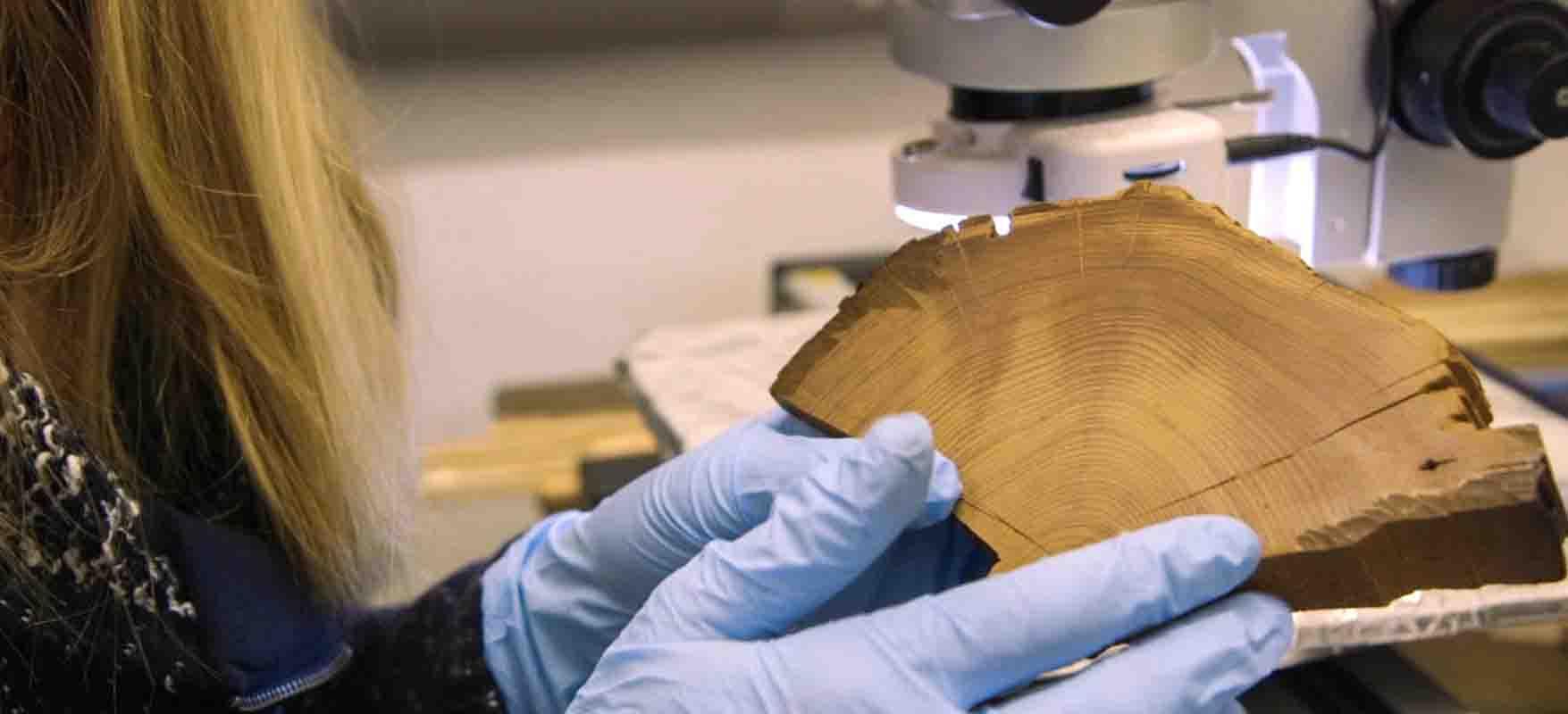 Radiocarbon dating revolutions in understanding
