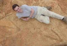 New exceptionally large carnivorous dinosaur footprints found in Lesotho.