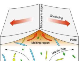 The mantle beneath Earth's mid-oceanic ridges contains heterogeneous blobs of material