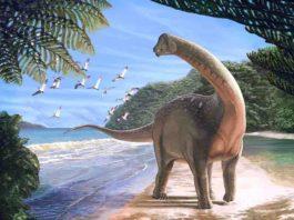 Mansourasaurus, New Egyptian dinosaur