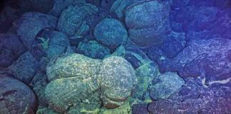 pillow basalts from undersea volcanic eruptions,