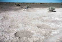 Footprints of mammoths, dated to 43,000 years ago, are seen in a portion of a trackway that was uncovered by researchers in 2017 in an ancient dry lake bed in Lake County, Oregon.