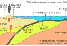 The oceanic slow carbon cycle.