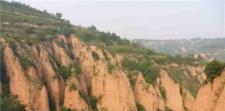 Chinese loess plateau