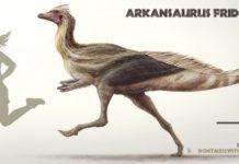 Arkansaurus fridayi