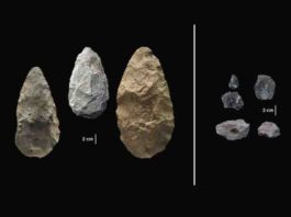 The first evidence of human life in the Olorgesailie Basin comes from about 1.2 million years ago. For hundreds of the thousands of years, people living there made and used large stone-cutting tools called handaxes (left).