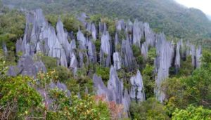 The Pinnacles of Gunung Mulu in Borneo