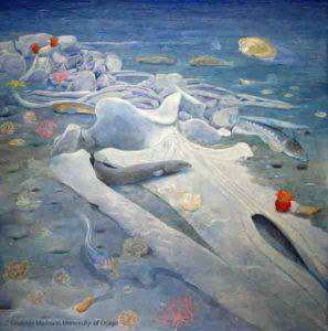 Toipahautea whale