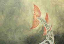 Hyneria lindae
