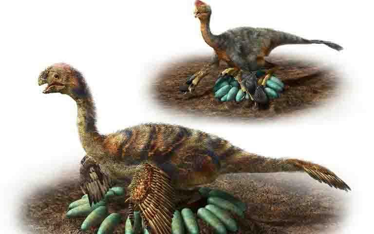 Oviraptorosaurs