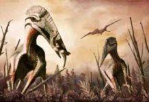 giant azhdarchid pterosaur Hatzegopteryx