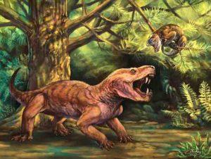Gorynychus masyutinae