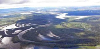 Lakes in the roadless Minto Flats surround the Tanana River in this photo from July 2014.