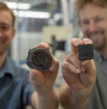 Postdoctoral Fellow Theodore Them (left, holding an extinct fossil sample) and Assistant Professor Jeremy Owens (right, holding a rock core sample).