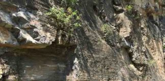 Ediacaran carbonate rocks in Three Gorges area, Hubei Province