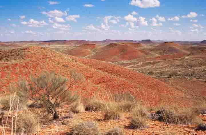 The Jeerinah Formation in Western Australia