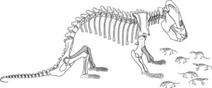 Researchers from The University of Texas at Austin found a fossil of an extinct mammal relative with a clutch of 38 babies that were near miniatures of their mother.
