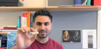 This is PhD student Mohamad Bazzi with a fossil lamniform shark tooth