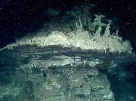 This hydrothermal chimney was one of several discovered by MBARI scientists in the southern Pescadero Basin.