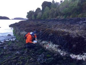 Ed Garrett of Durham University examines bleached coralline algae related to the the 2016 magnitude 7.6 Chiloé earthquake in Chile. Credit: Martin Brader