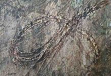 Close-up of a looping millipede death-trail.