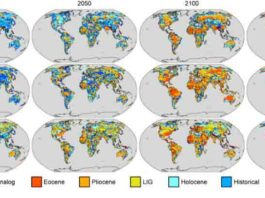 Future climate analogs for the years 2020, 2050, 2100 and 2200 according to three well-established models. If greenhouse gas emissions are not curbed, the study says, the climate will continue to warm until it begins to resemble the Eocene in 2100. Credit: Courtesy of the authors