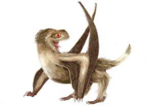 Daohugou pterosaur
