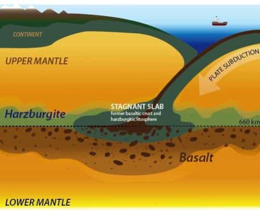 subducted oceanic crust inferred from this study.