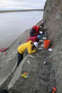 Scientists excavate a dinosaur bone bed along the Colville River.