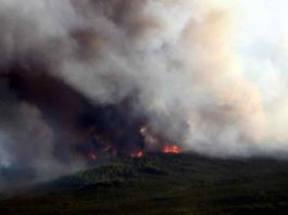 A 2015 wildfire burns in the boreal forest of central Alaska. A recent study by Tyler Hoecker and Philip Higuera reconstructs fire history in a nearby boreal forest landscape and suggests that fire activity over the past several decades has been higher than at any time over the past 450 years.
