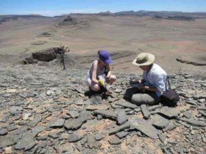 Researchers conducting fieldwork in Namibia as part of a previous study.